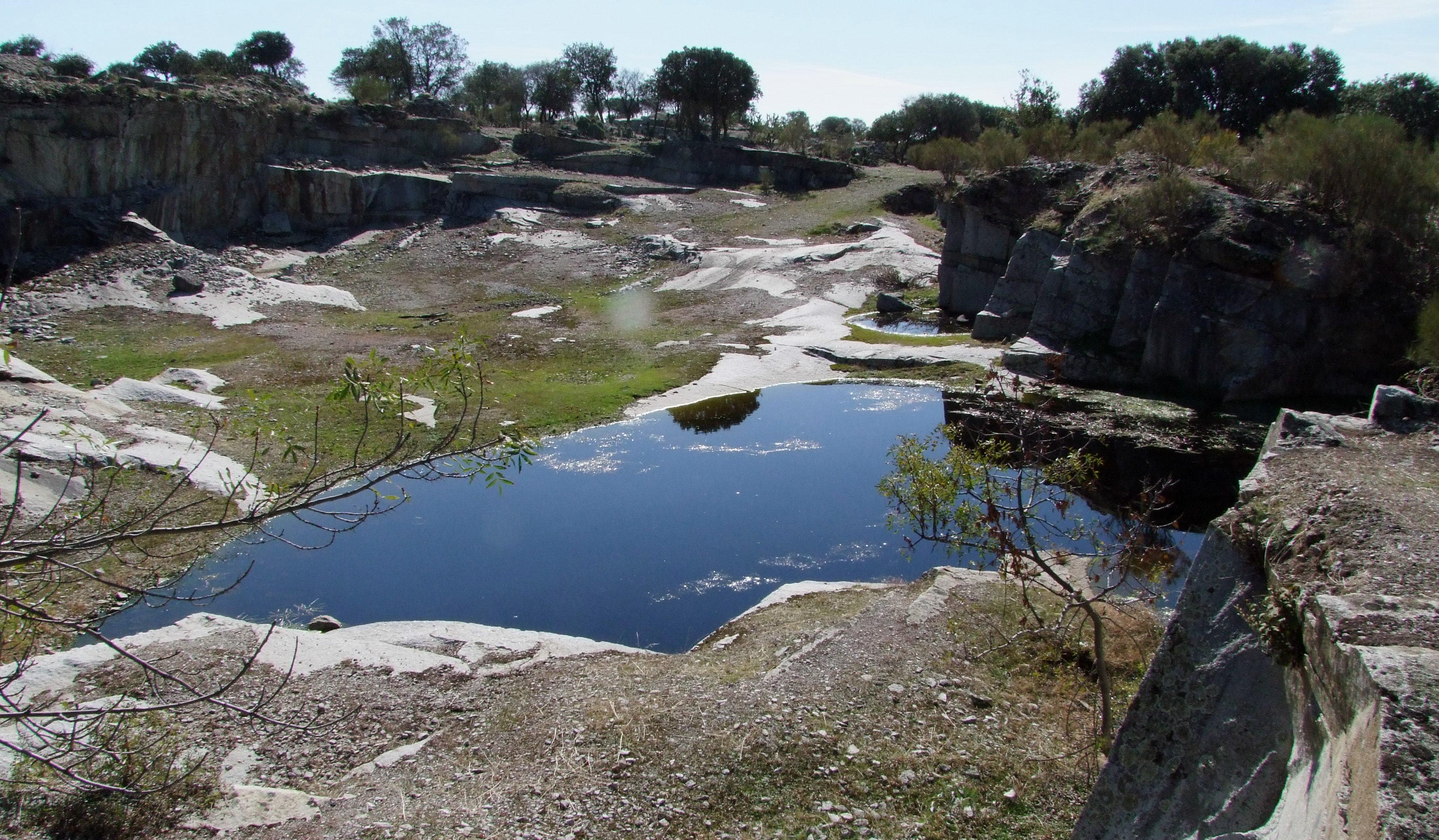 Las antiguas canteras inundadas de Alpedrete constituyen un hábitat de importancia para los anfibios de la Comunidad de Madrid